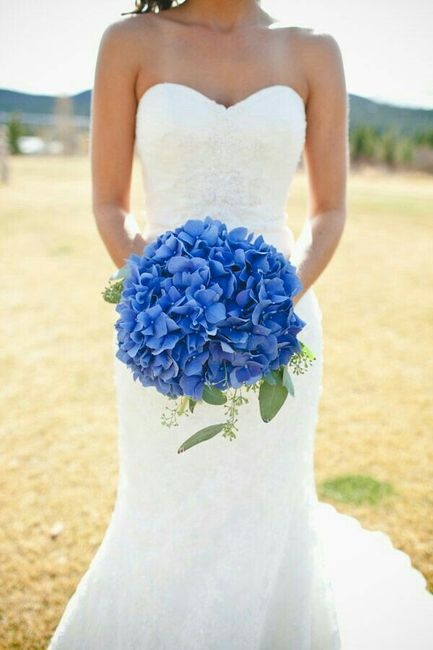 Bouquet Sposa Ortensie.Bouquet Di Ortensie Organizzazione Matrimonio Forum Matrimonio Com