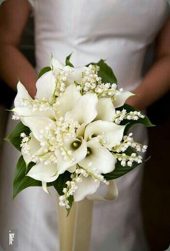 Bouquet Sposa Mughetto.Bouquet Di Mughetto Organizzazione Matrimonio Forum Matrimonio Com