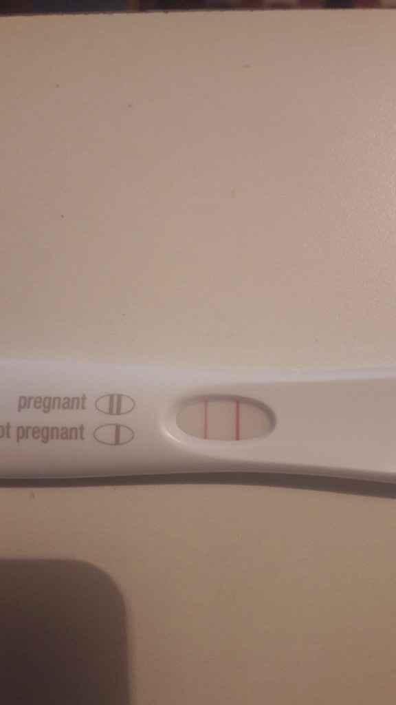 Febbraio 2019 - le aspiranti future mamme - 1