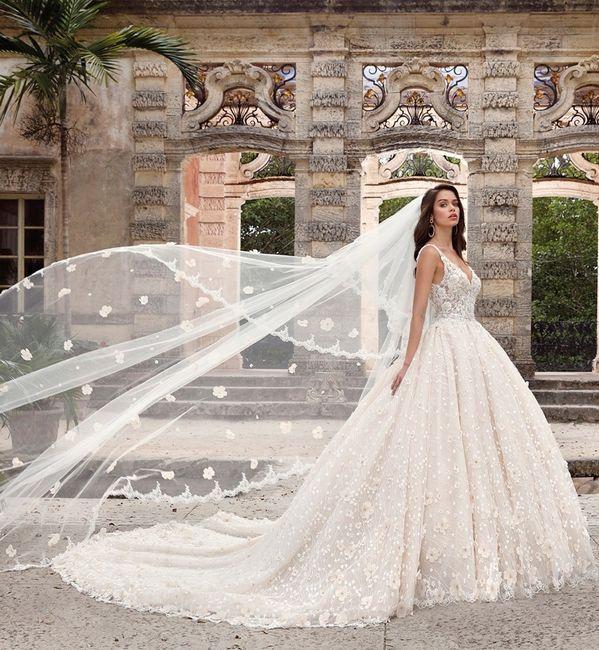 Vota l'abito da sposa che ti rispecchia di più 1