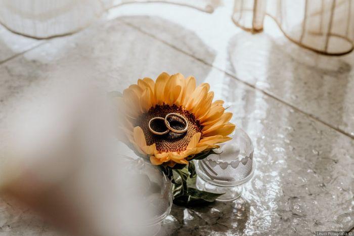 Speciale fedi: scopri l'anello delle tue nozze! 1