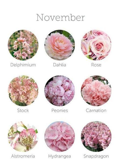 Il tuo bouquet sposa in base al mese delle tue nozze
