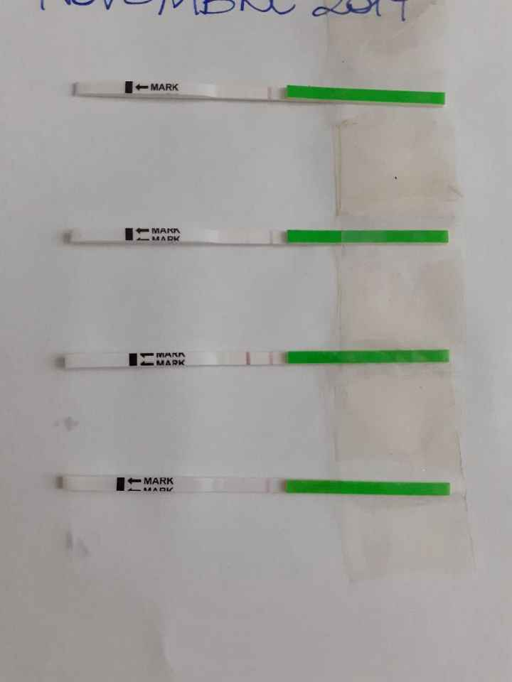 Test ovulazione one step. - 1