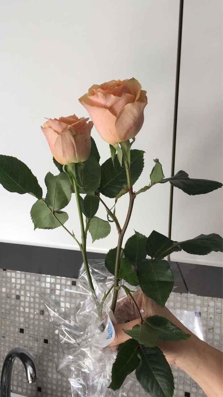 Scelta rose - 2