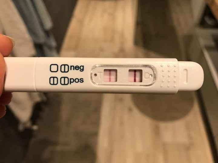 Help confronto primi sintomi gravidanza - 1