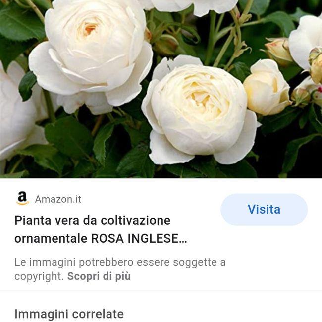 Bouquet di peonie 💐 - 1