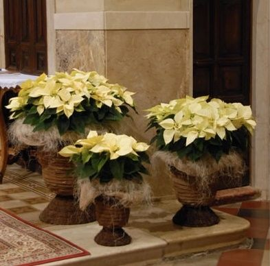 DECORAZIONI NUZIALI MATRIMONIO - invernale/natalizio -2