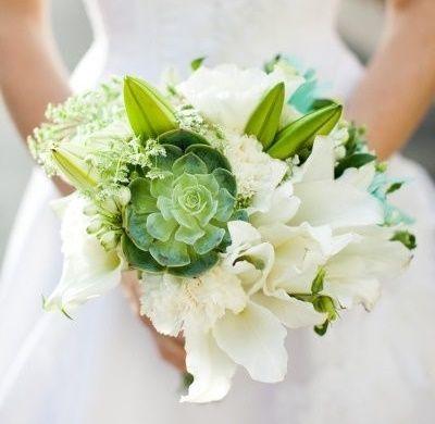 il bouquet della sposa, piante grasse 2