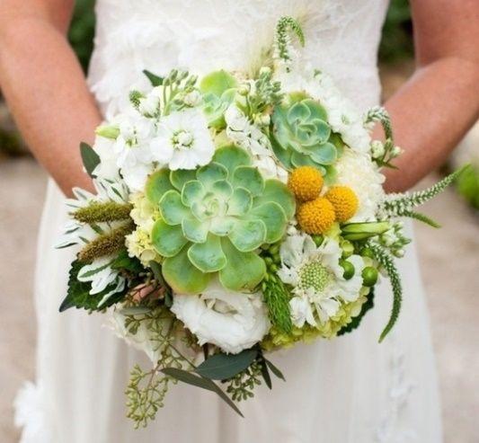 il bouquet della sposa, piante grasse 1