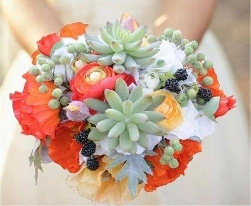 il bouquet della sposa, piante grasse  3