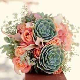 il bouquet della sposa, piante grasse  4