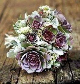 il bouquet della sposa, piante grasse 10