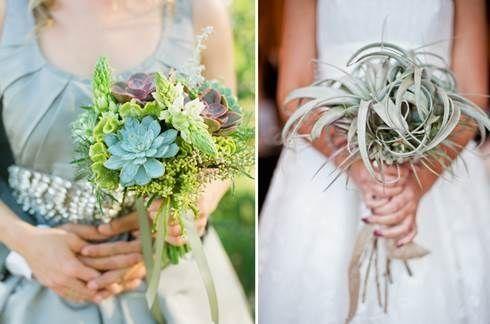 il bouquet della sposa, piante grasse 12