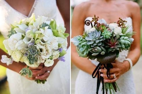 il bouquet della sposa, piante grasse 15