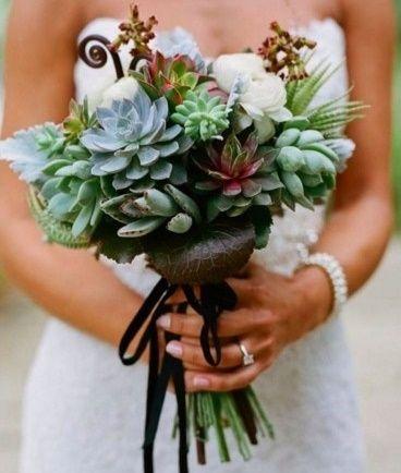 il bouquet della sposa, piante grasse 17