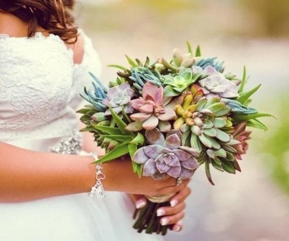 il bouquet della sposa, piante grasse 18