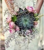 il bouquet della sposa, piante grasse 20