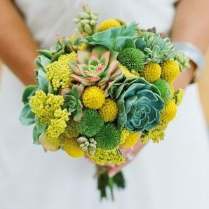 il bouquet della sposa, piante grasse 21