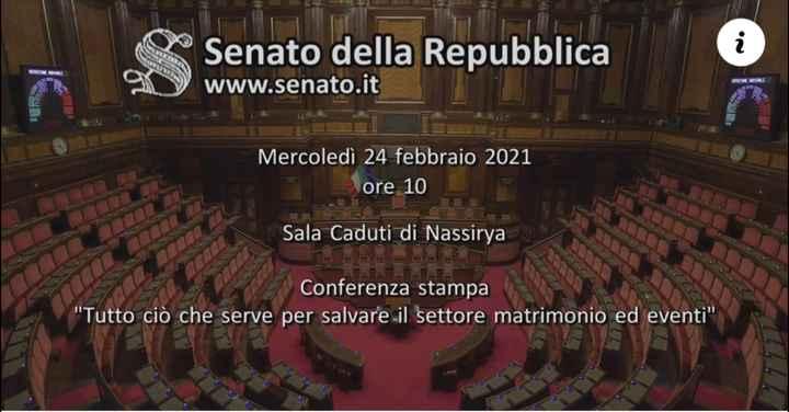 Diretta in Senato per settore matrimoni - 1