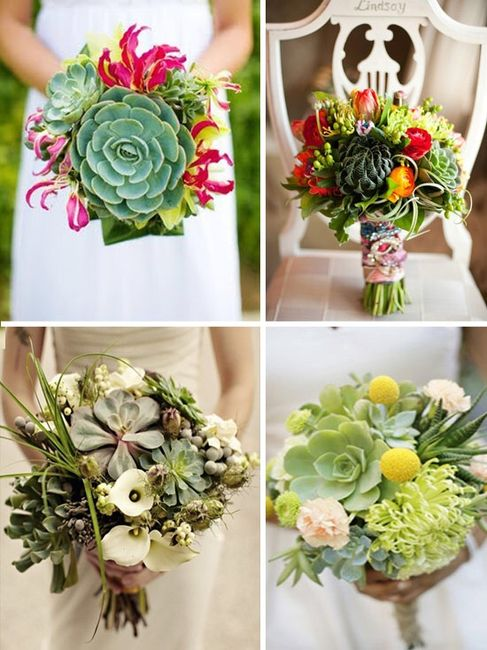 Matrimonio Tema Botanico : Tema matrimonio organizzazione forum