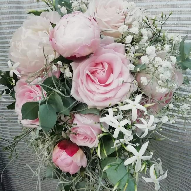 """Consigli: Fiori rosa """"cipria"""" 2"""