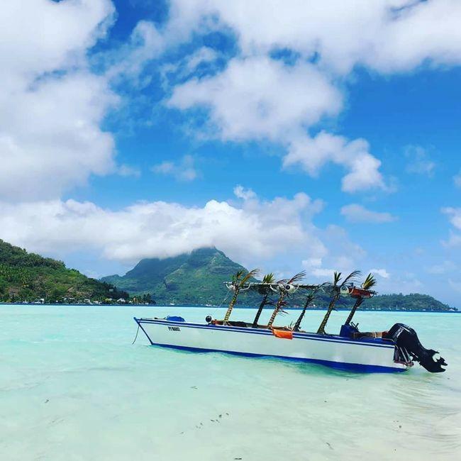 Per tutte le sposine che andranno a Bora Bora 🌺 4