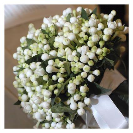 Il mio bouquet pagina 2 forum for Fiori piccoli bianchi