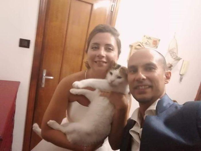 Foto di nozze con i nostri amici animali - 2