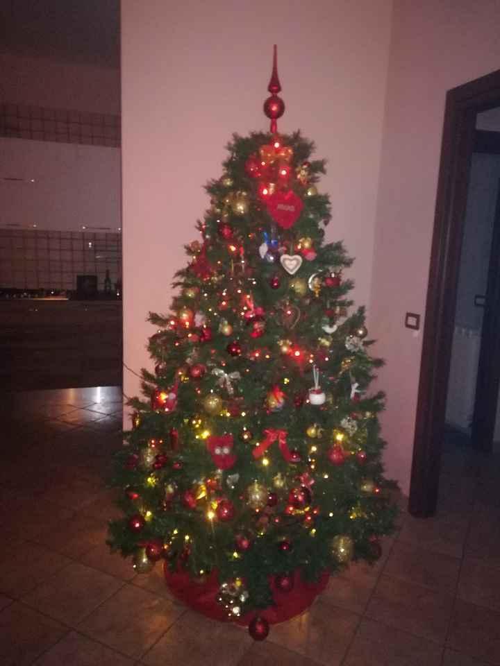 Fatto anche l'albero di Natale! - 1