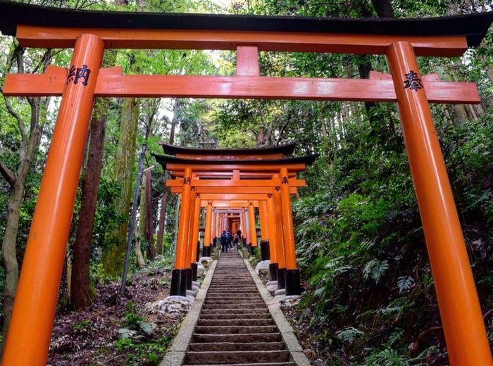 Viaggio in Giappone a maggio 2