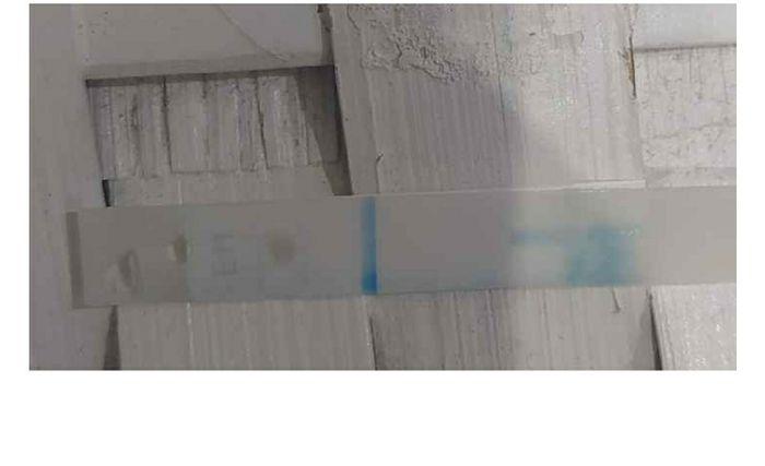 Clearblue plus smontato 1