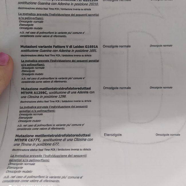Referto trombofilia 4