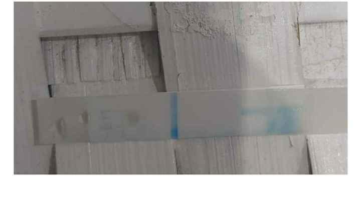 Clearblue plus smontato - 1