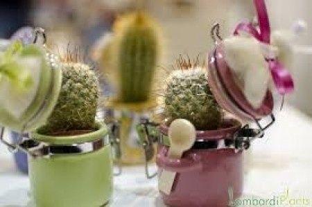 Matrimonio Tema Piante Grasse : Bomboniere pianta grassa: consiglio! organizzazione matrimonio
