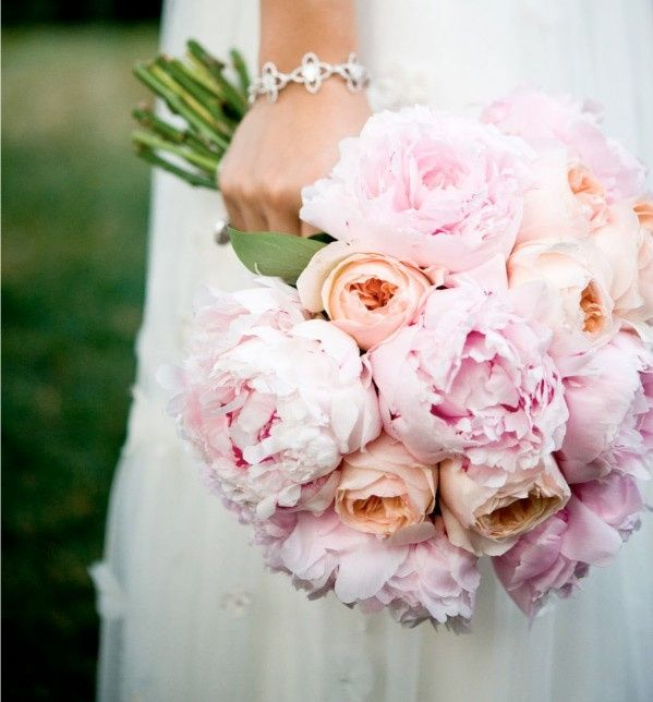 Consiglio bouquet organizzazione matrimonio forum for Rose inglesi