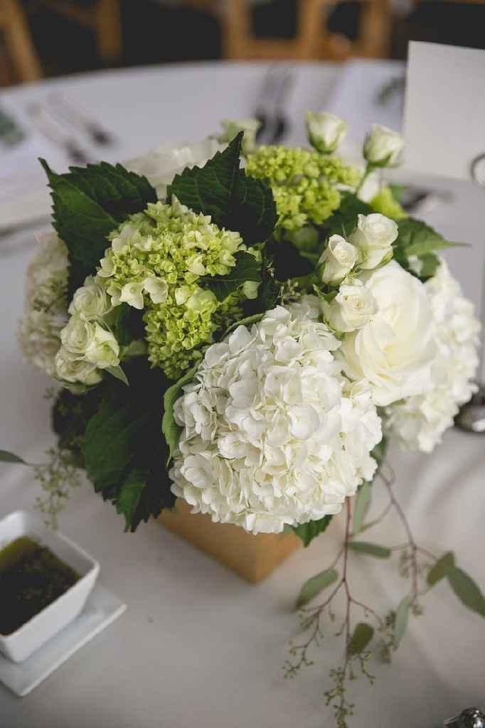 Help ho bisogno di un consiglio sui fiori! - 5