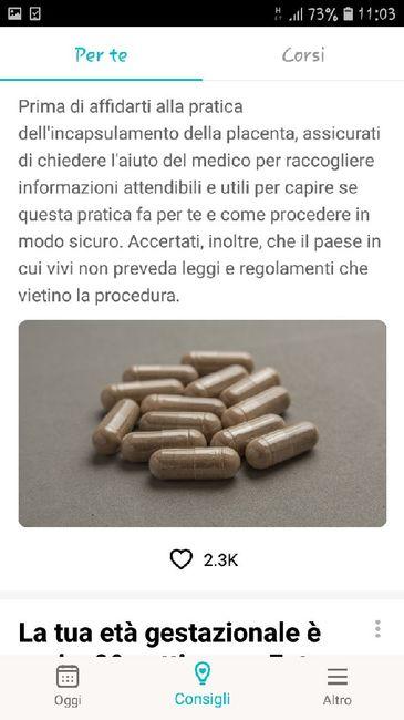 Incapsulamento della placenta... 4