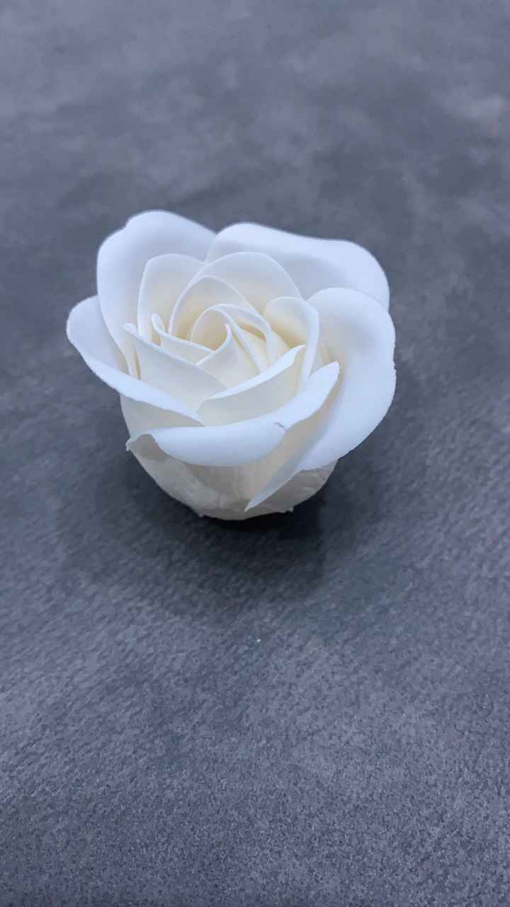 Rosa di sapone - 1