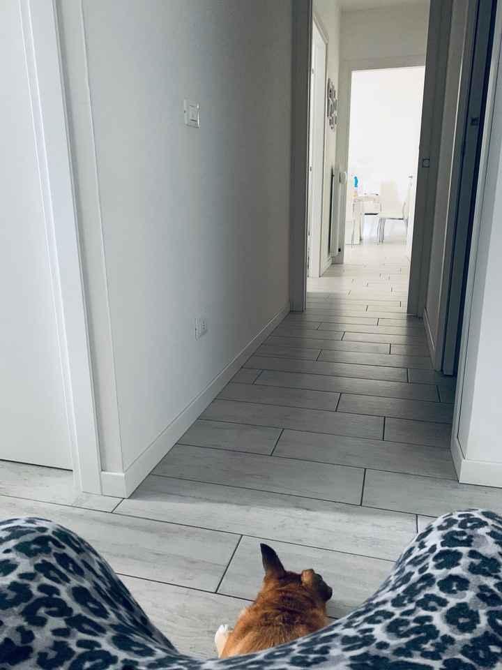 Come sono i pavimenti e le pareti della vostra casa? - 6