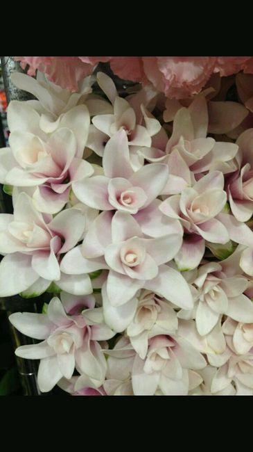 Curcuma Bouquet Sposa.Aiutatemi A Scegliere Il Bouquet Pagina 2 Organizzazione