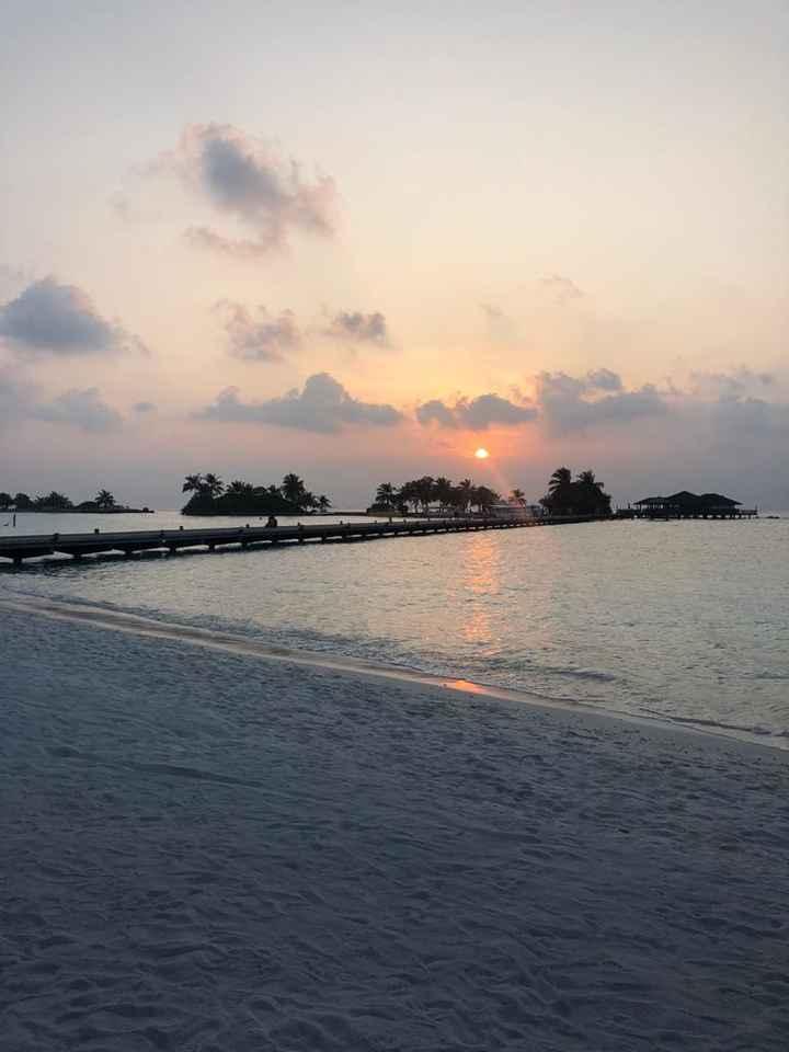 Luna di Miele Emirati Arabi/Maldive - 1