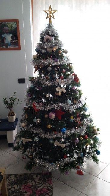 Pubblichiamo la foto dei nostri alberi!! ;) - 1