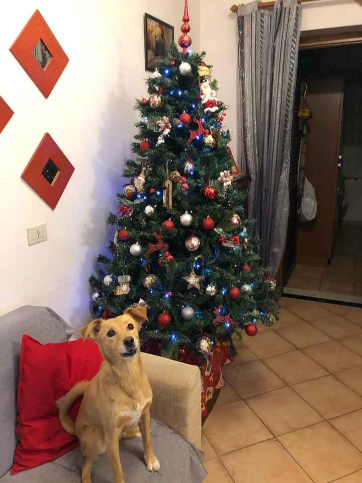 Natale alle porte 🎄✨ - 1