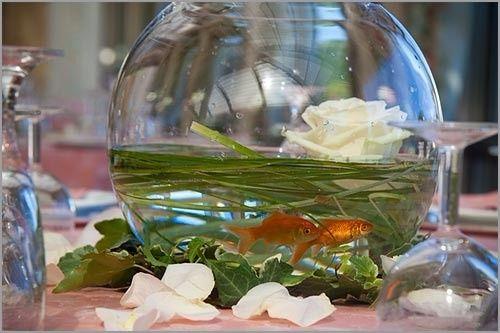 Boccia pesci con decorazioni foto for Boccia pesci