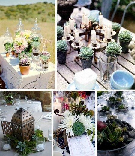 idee piante grasse - Foto Organizzazione matrimonio