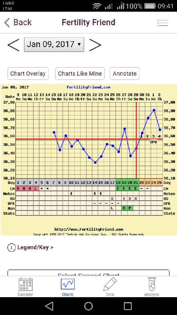 Grafico tb - 1