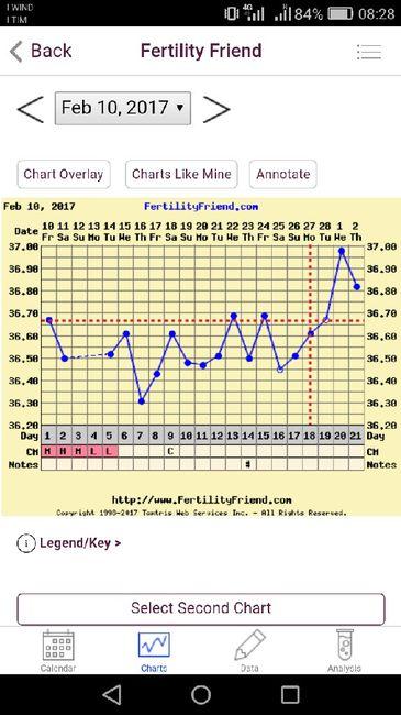 Grafico tb 1 - 1