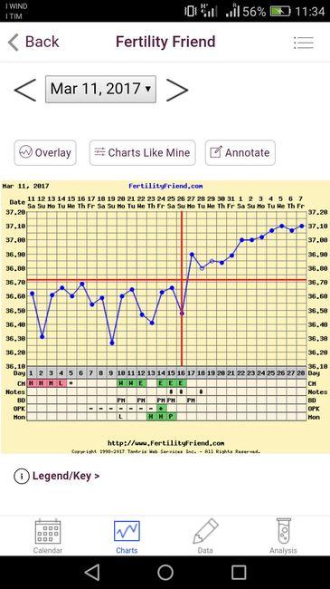 grafico tb