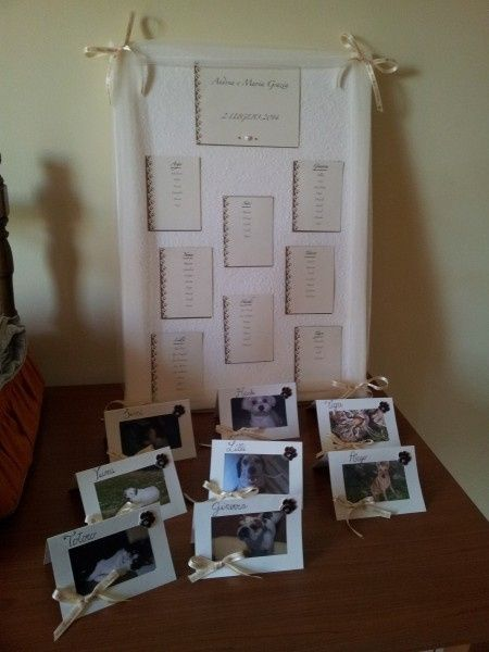 Matrimonio Tema Animali : Il mio semplice fai da te tema matrimonio cani e gatti
