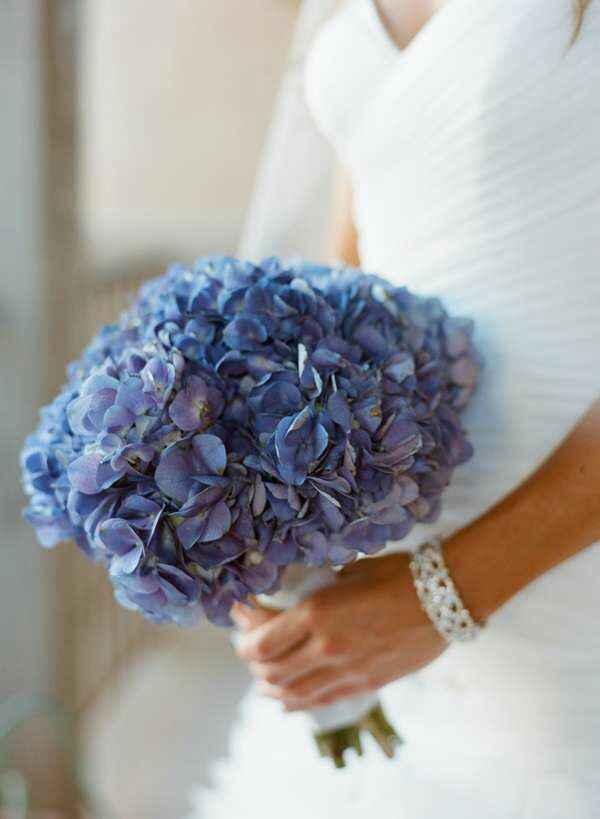 Bouquet di ortensie 🌸 - 4